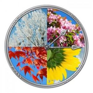 image8 FR.123rf.com - 9202775-collages-nature-en-forme-d-horloge-avec-quatre-saisons-de-l-ann-e-isol-es-sur-blanc